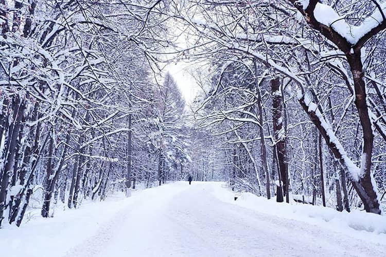 outdoors snow street
